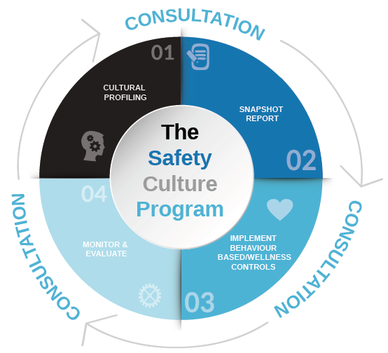 safety_behavioural_wheel.png